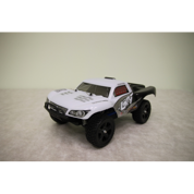 1:16 Off-road Rally Truck, 4WD, RTR, 2.4G