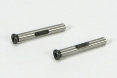 E4 Rear Lower Outer Hinge Pin (2)